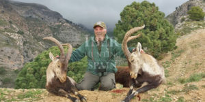 Two ronda Ibex hunted in one stalk