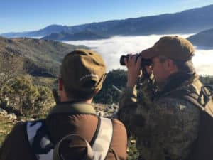 Cull Hunt in Cazorla with Iberhunting