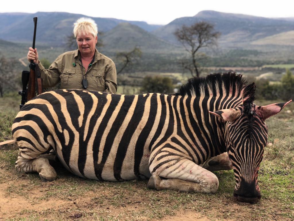south africa hunting zebra iberhunting