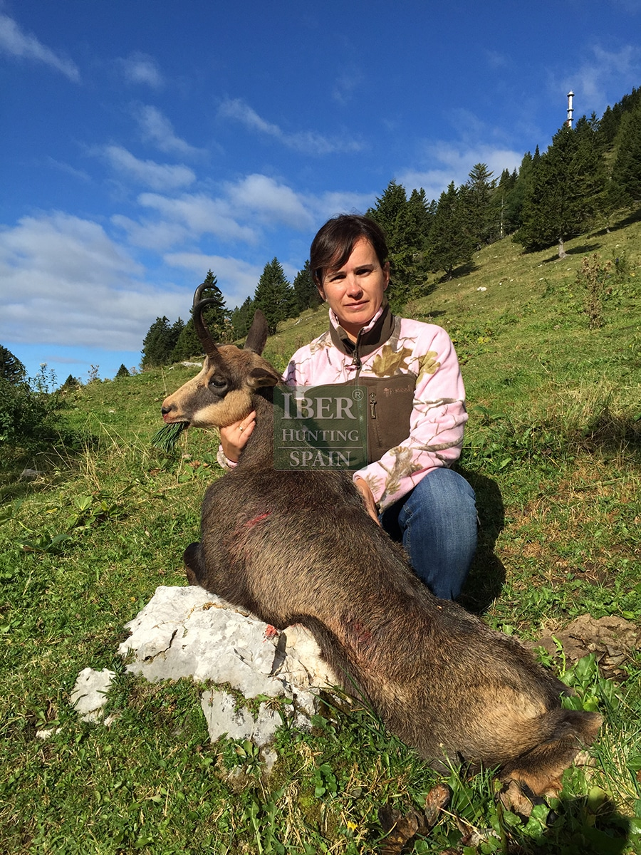 hunting pyrenean chamois with Iberhunting 2