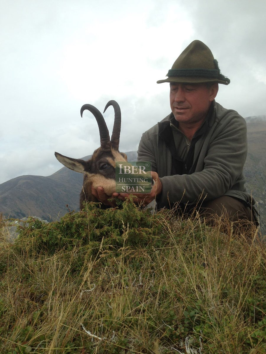 hunting pyrenean chamois with Iberhunting 4
