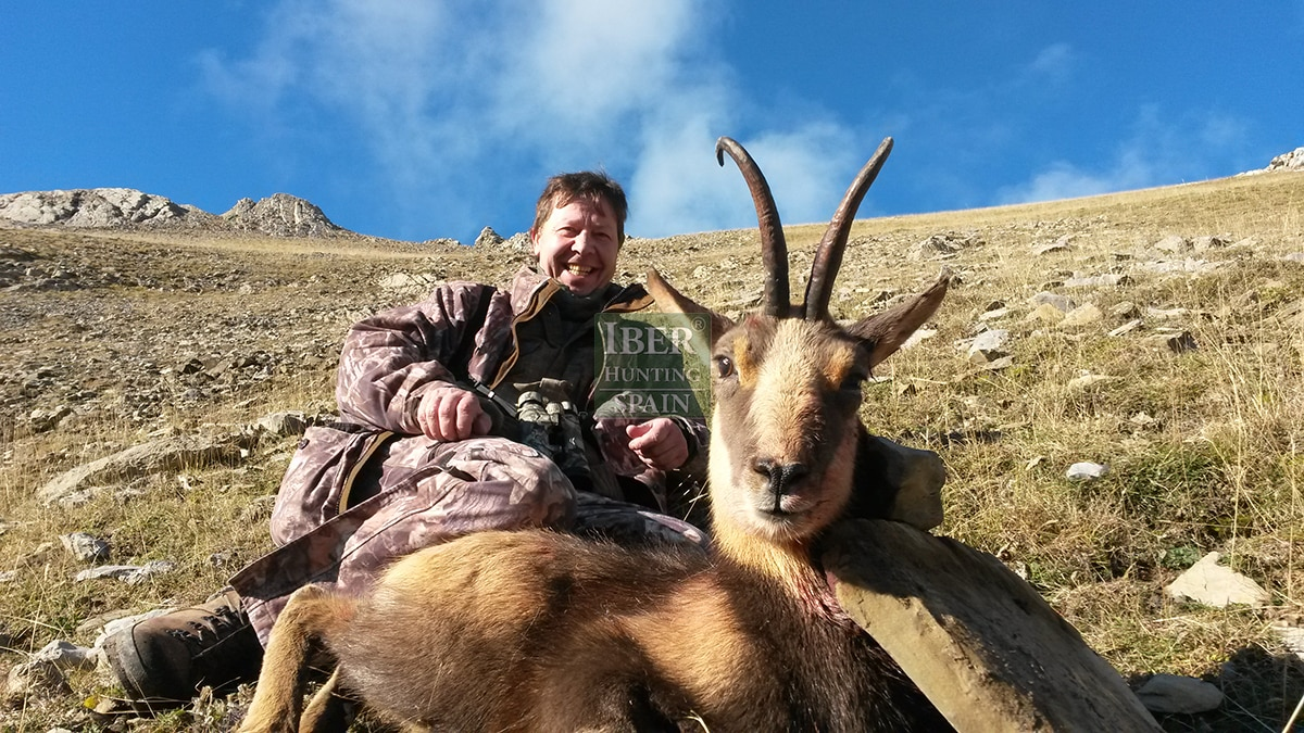 hunting pyrenean chamois with Iberhunting 7