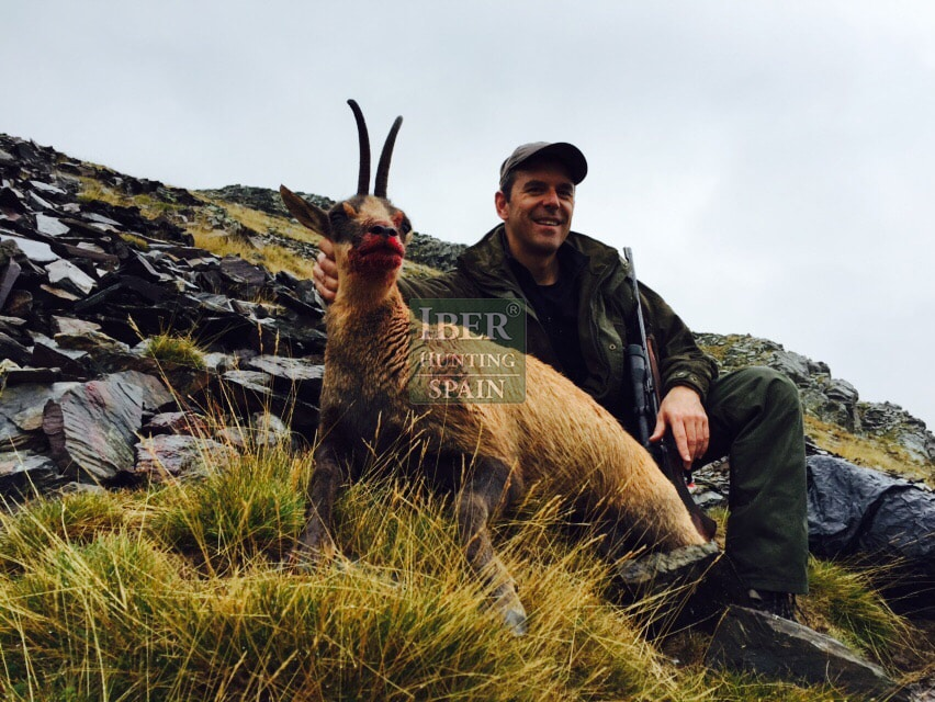 hunting pyrenean chamois with Iberhunting