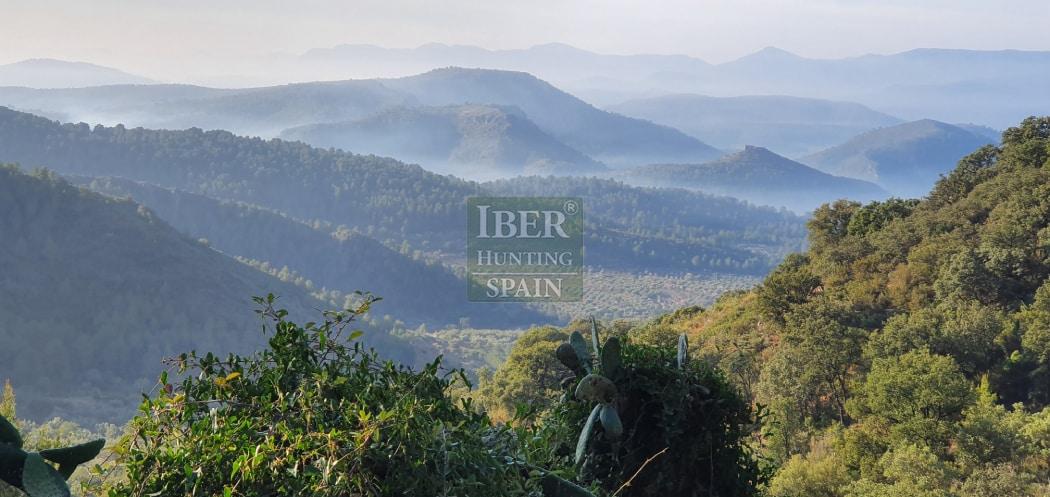 Hunt in Spain Beceite Ibex-Iberhunting Spain (3)