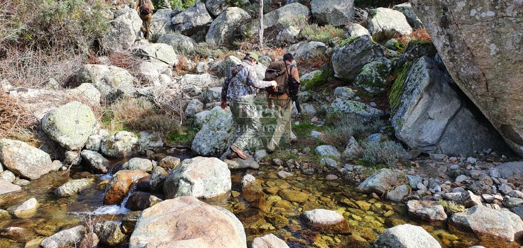 Hunt in Spain Gredos Ibex-Iberhunting Spain (2)