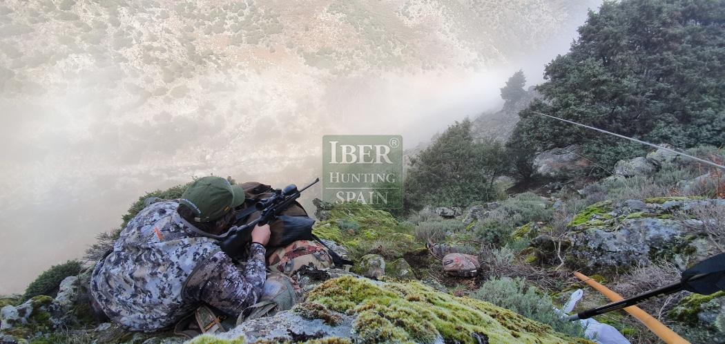Hunt in Spain Gredos Ibex-Iberhunting Spain (3)