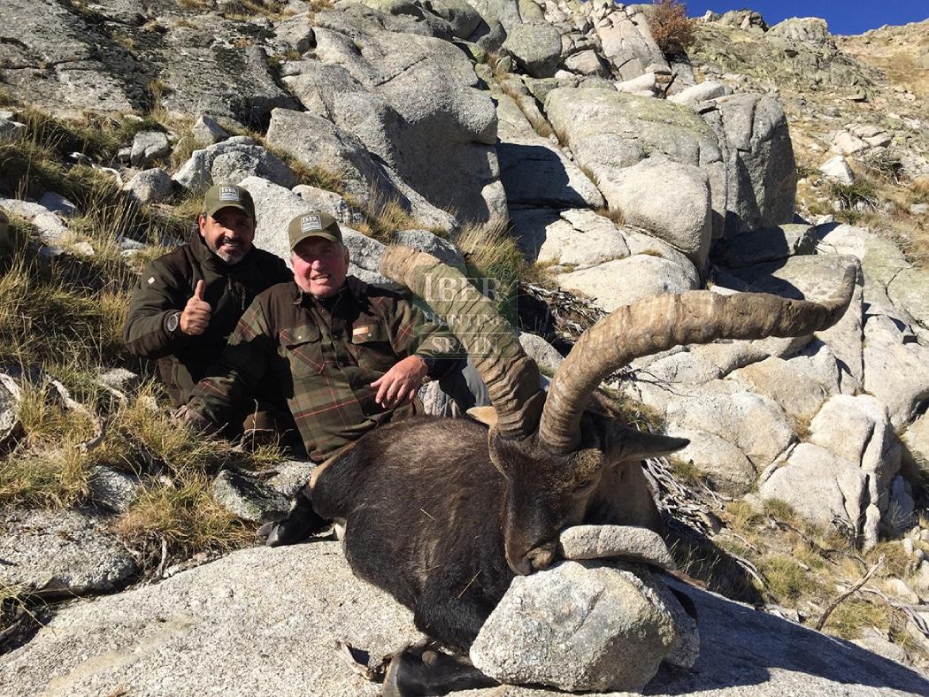 Hunt in Spain Gredos ibex-Iberhunting Spain (1)