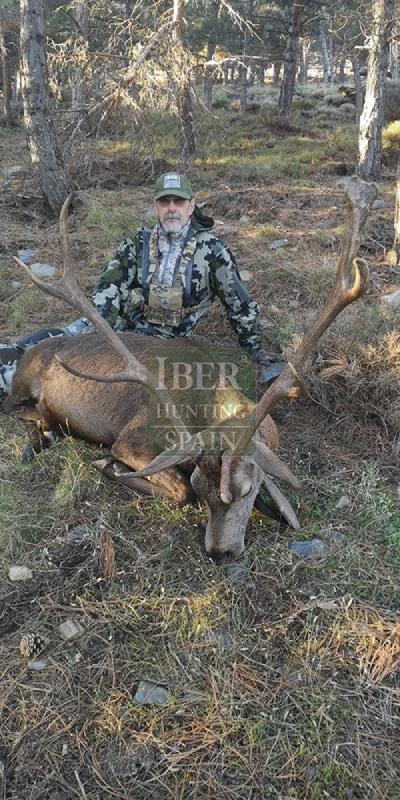 Hunting Mountain Red Deer with Iberhunting Spain (6)