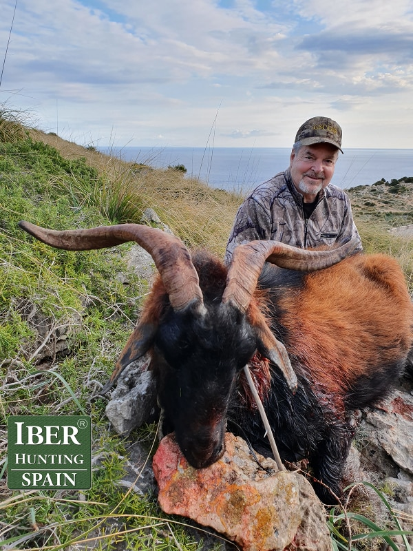 hunting Boc Balear Iberhunting