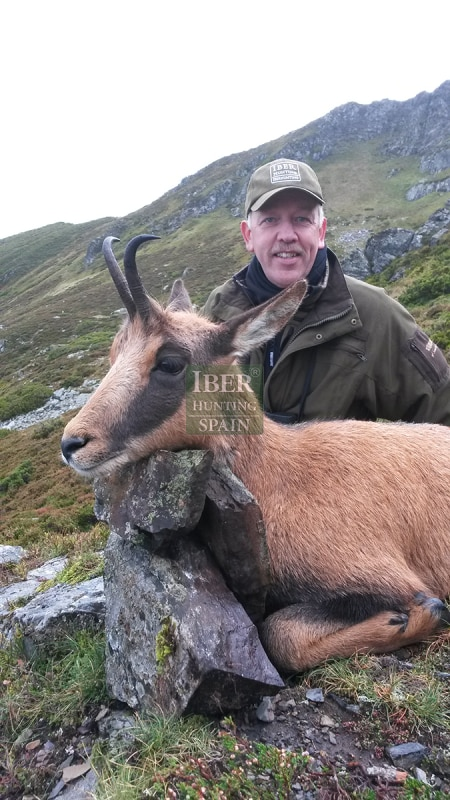 hunting cantabrian chamois iberhunting (4)