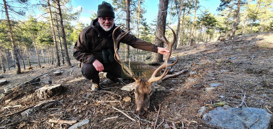 Hunt mountain red deer with Iberhunting Spain