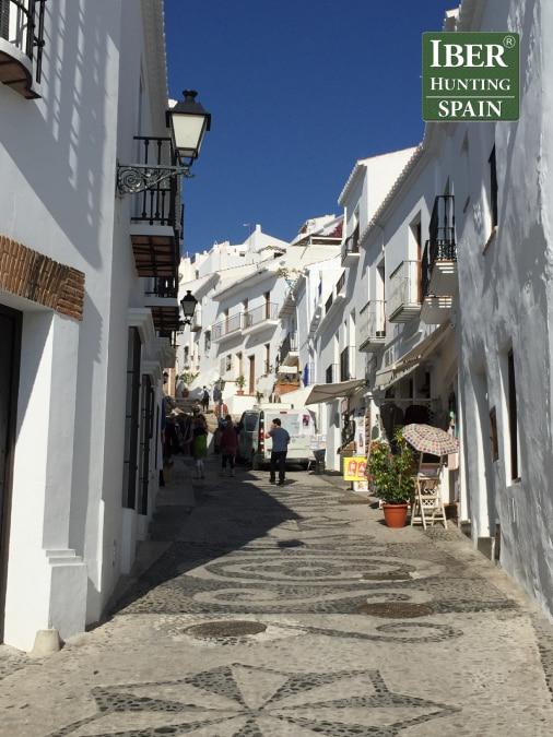 Tourism Ronda Ibex-Andalusian White Towns-Iberhunting Spain (1)