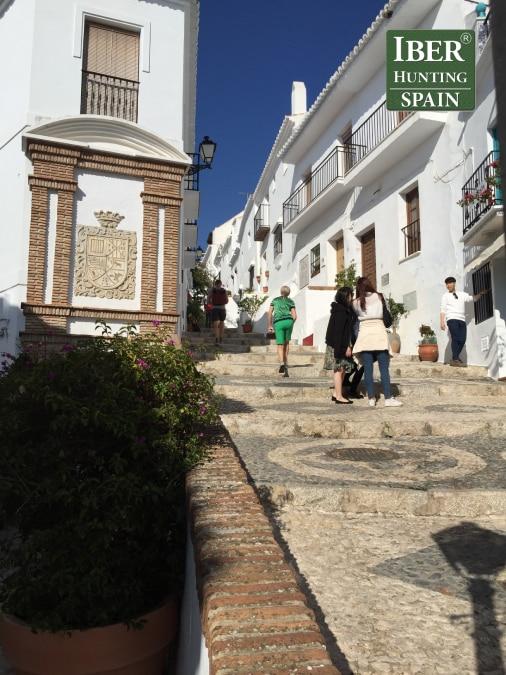Tourism Ronda Ibex-Andalusian White Towns-Iberhunting Spain (10)