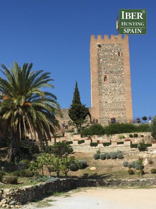 Tourism Ronda Ibex-Andalusian White Towns-Iberhunting Spain (12)