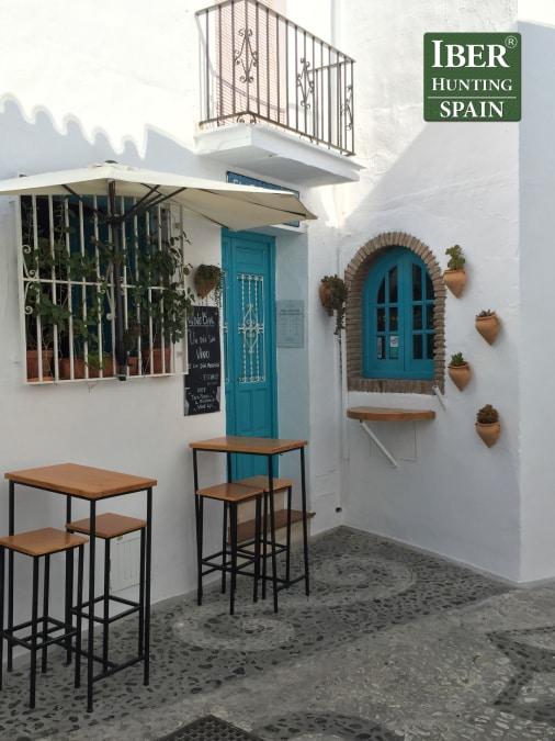 Tourism Ronda Ibex-Andalusian White Towns-Iberhunting Spain (14)