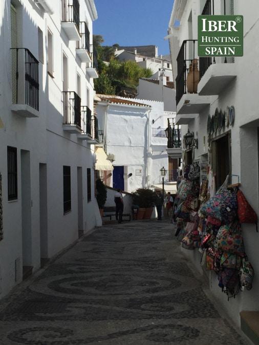 Tourism Ronda Ibex-Andalusian White Towns-Iberhunting Spain (16)