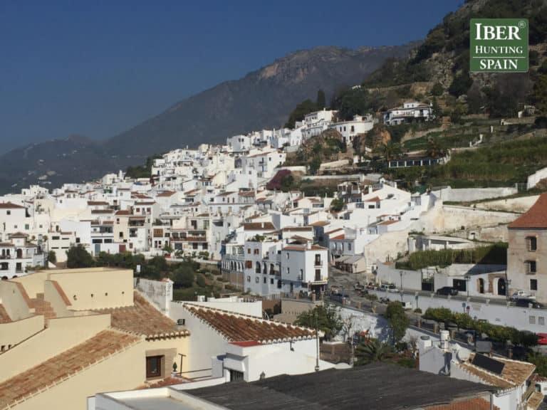 Tourism Ronda Ibex-Andalusian White Towns-Iberhunting Spain (2)