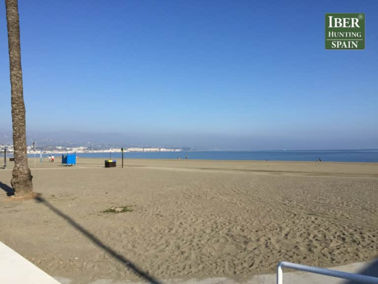 Tourism Ronda Ibex-Andalusian White Towns-Iberhunting Spain (4)