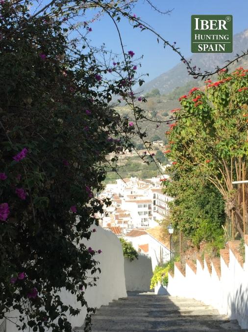 tourism ronda ibex-White Towns-Iberhunting Spain (3)