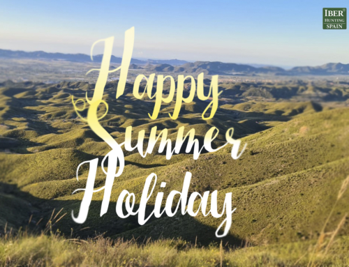 We wish you a happy summer holiday