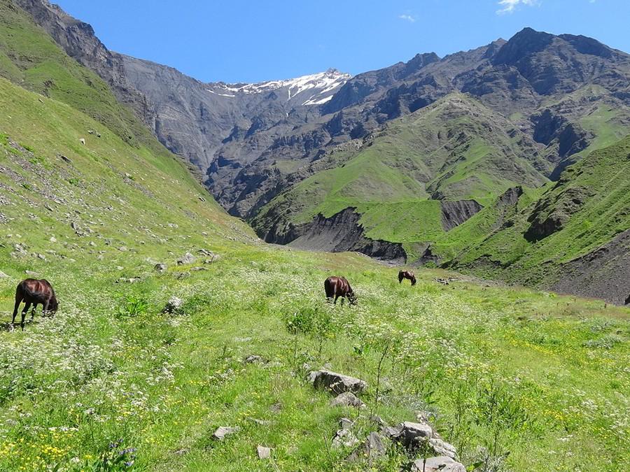 Hunt in Azerbaijan - Landscape of Azerbaijan