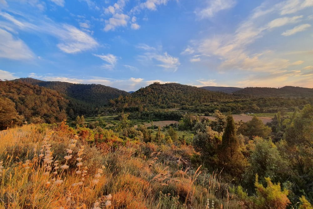 Mountains in Beceite for your hunt in Spain