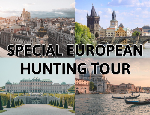 The best Christmas gift: a European Hunting Tour