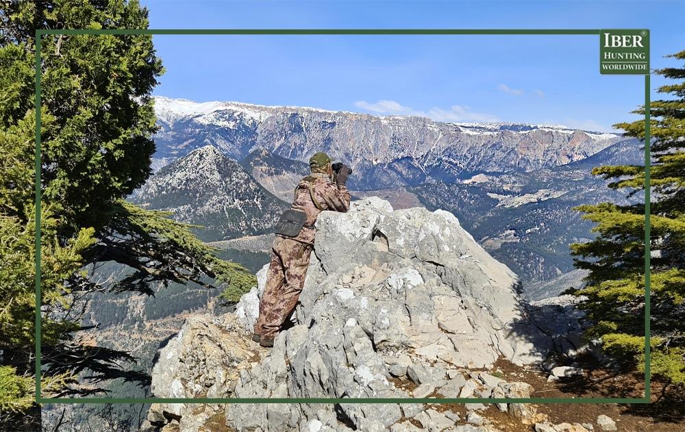 Hunting in Turkey the bezoar ibex- bezoar ibex