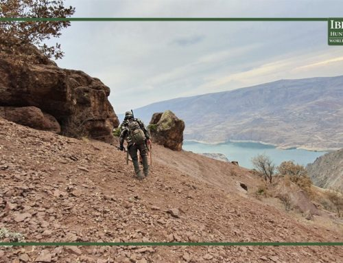 Tips for your international hunting trips travelling with a hunting rifle