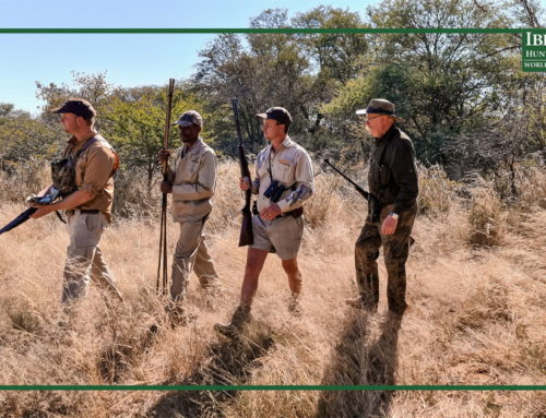 African game animals: choosing the right african destination and outfitter