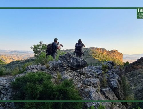 Affordable hunting trips in Spain with all the guarantees