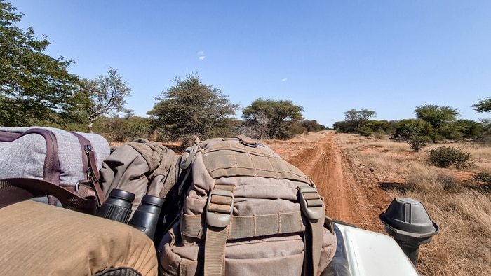 On the road looking for lion tracks
