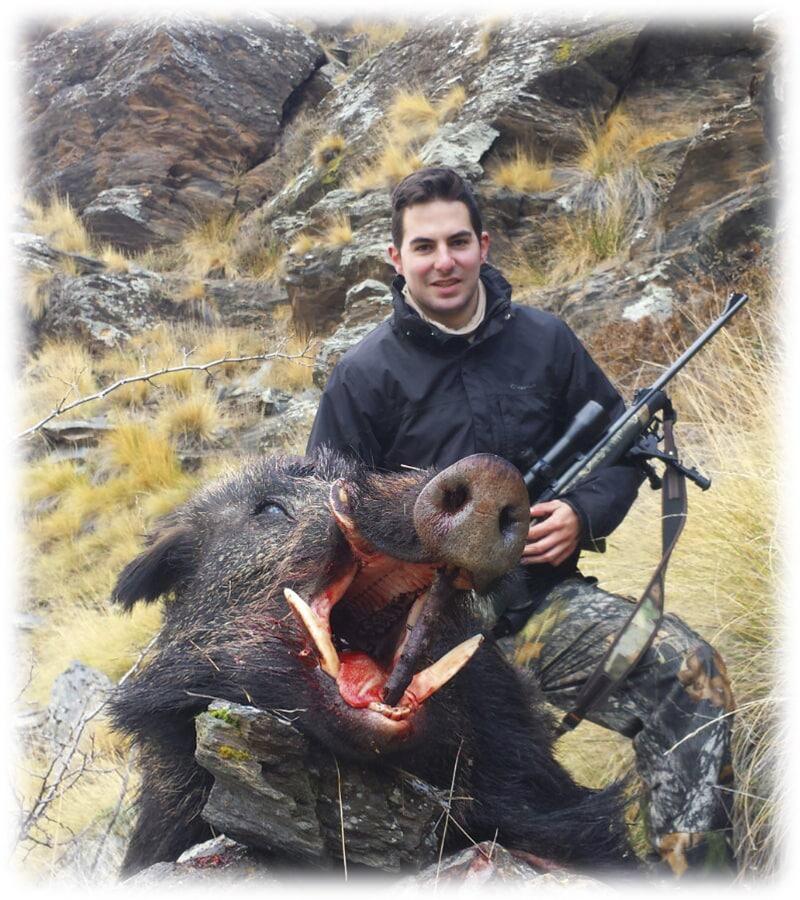 Hunting Spanish wild boar