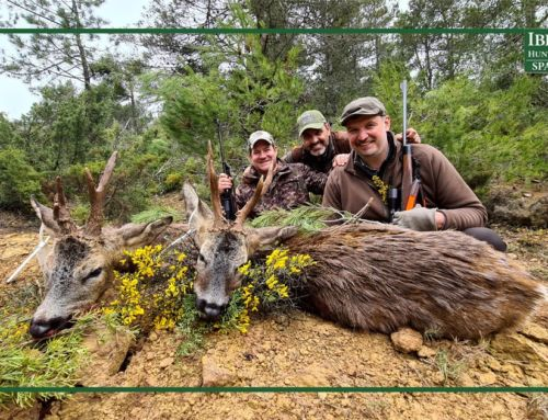 How the experience and instinct make successful hunts